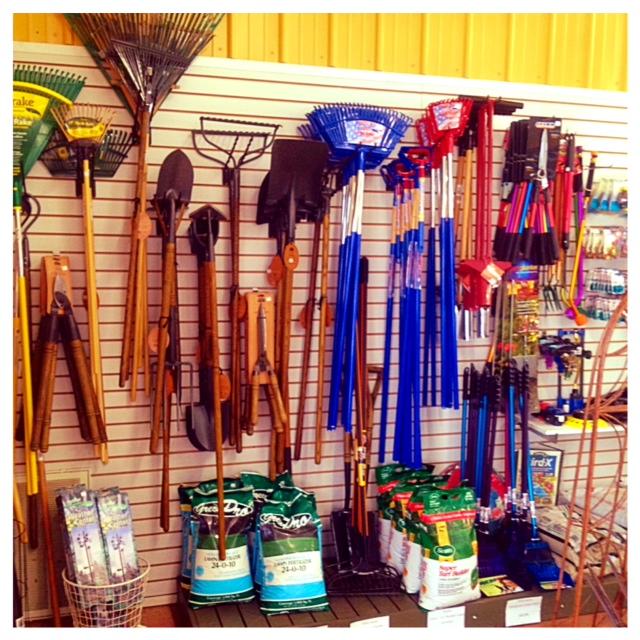 MS Store Tools.jpg