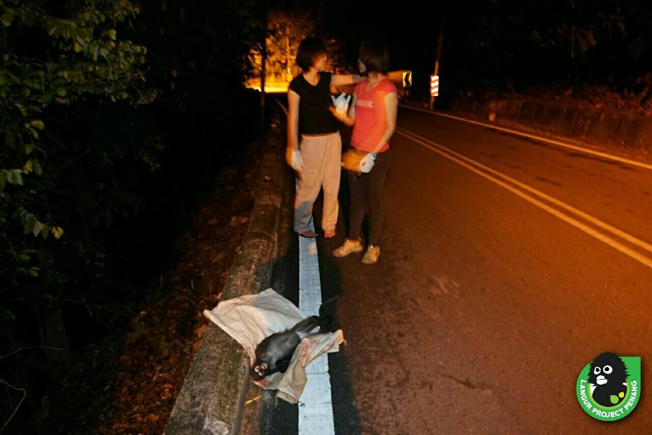 LPP arriving at the scene where Te Peik's lifeless body was found