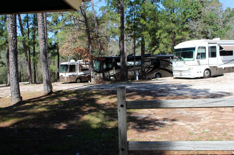 Trinity Pines has an RV Campground with 28 pad sites. Each site has full hook-ups (30 & 50 amp). Pricing is $10 per pad + $6 per person per night.