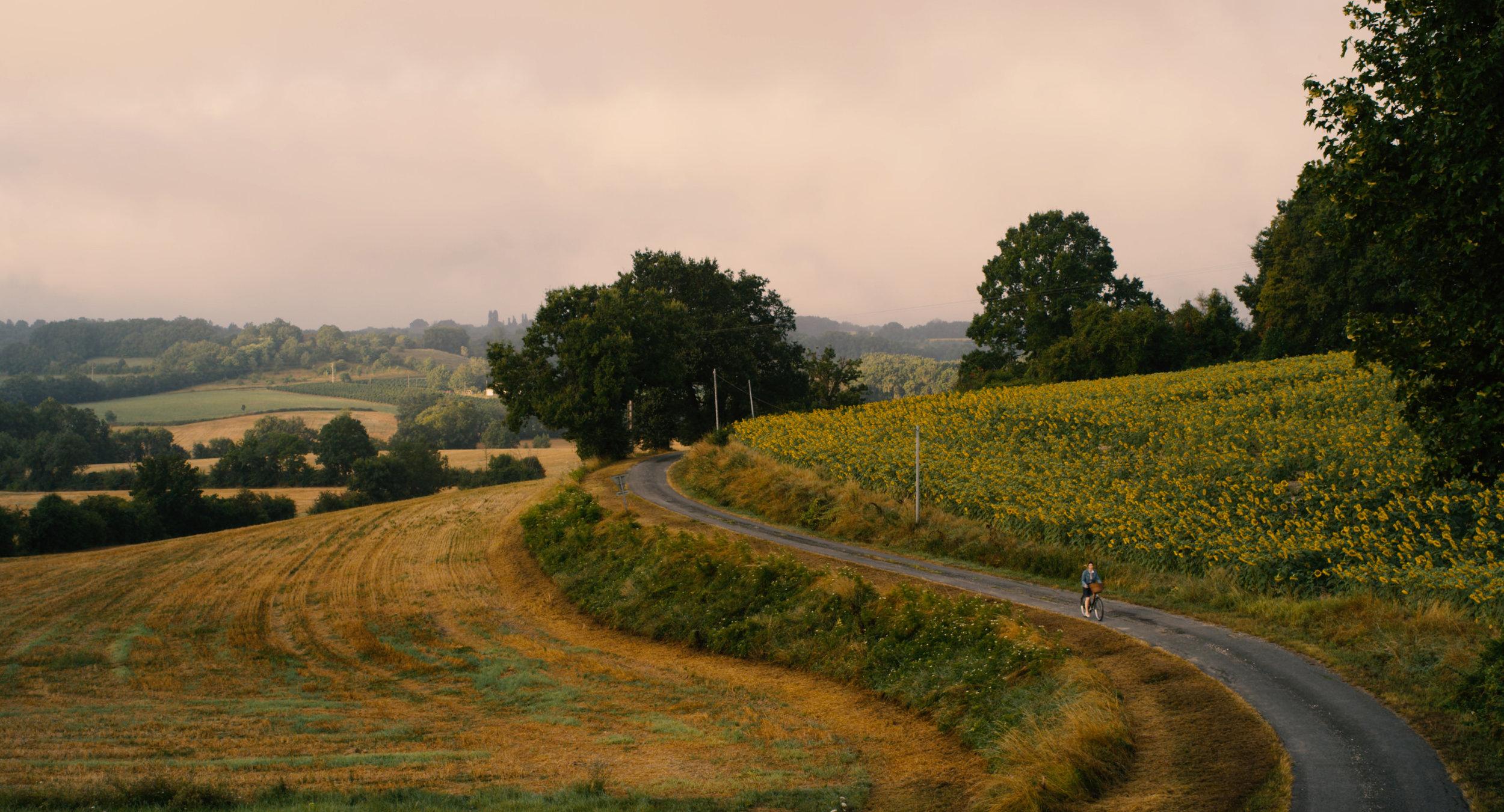 Castillones Landscape.jpg