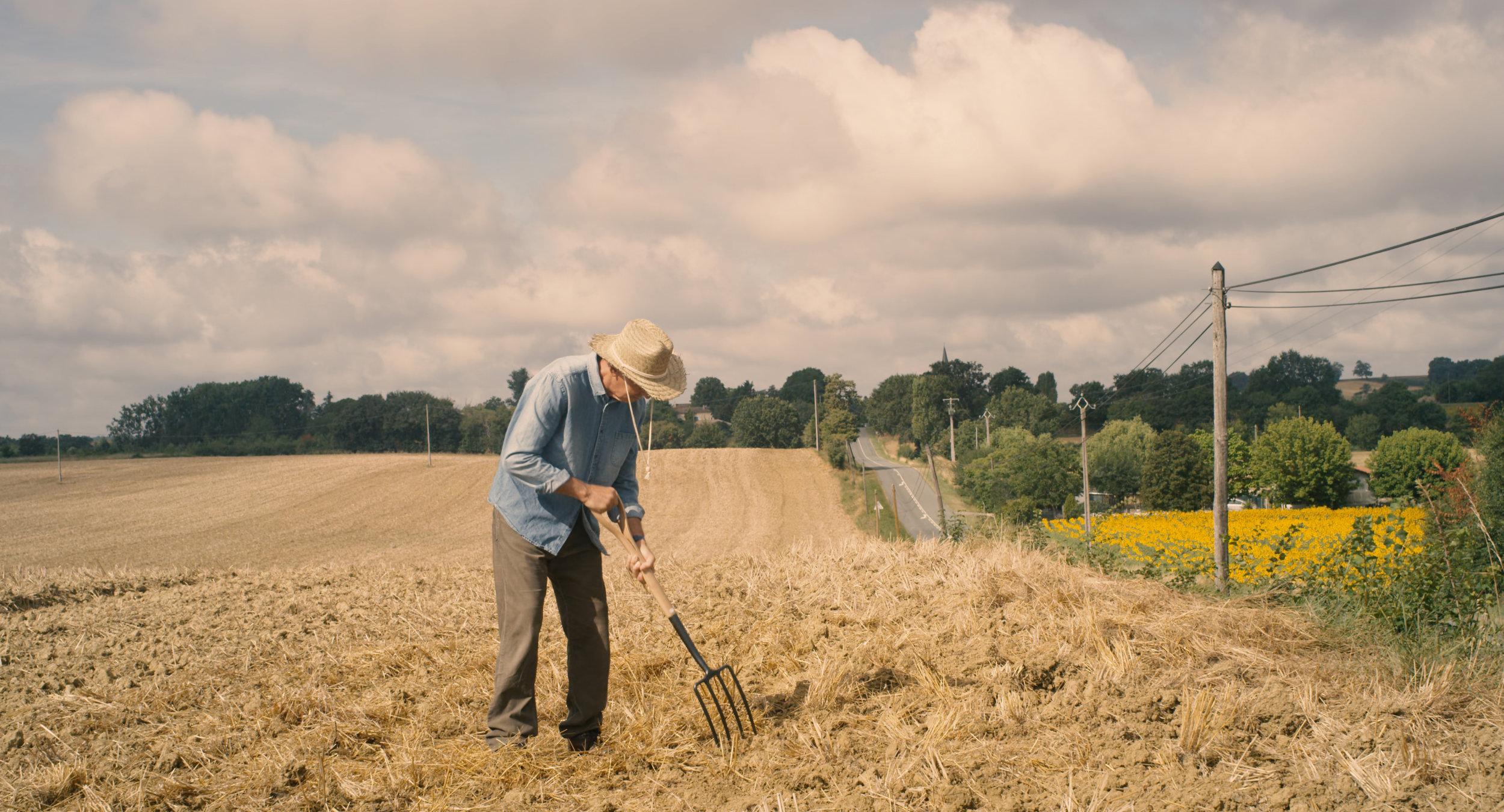 Farmer in the Field.jpg
