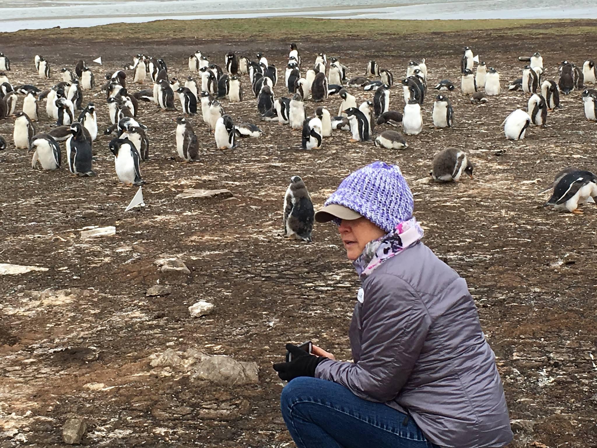 Jill artic with penguins.jpg