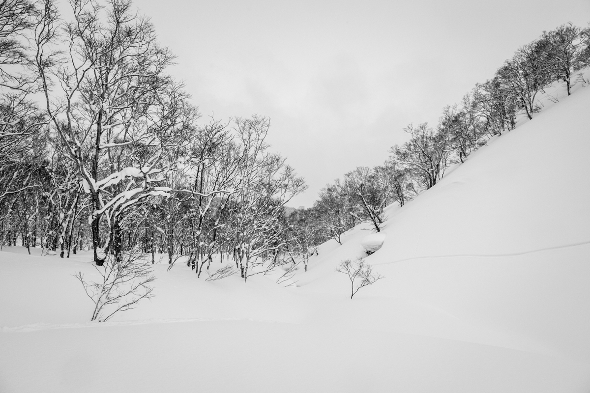Moiwa backcountry