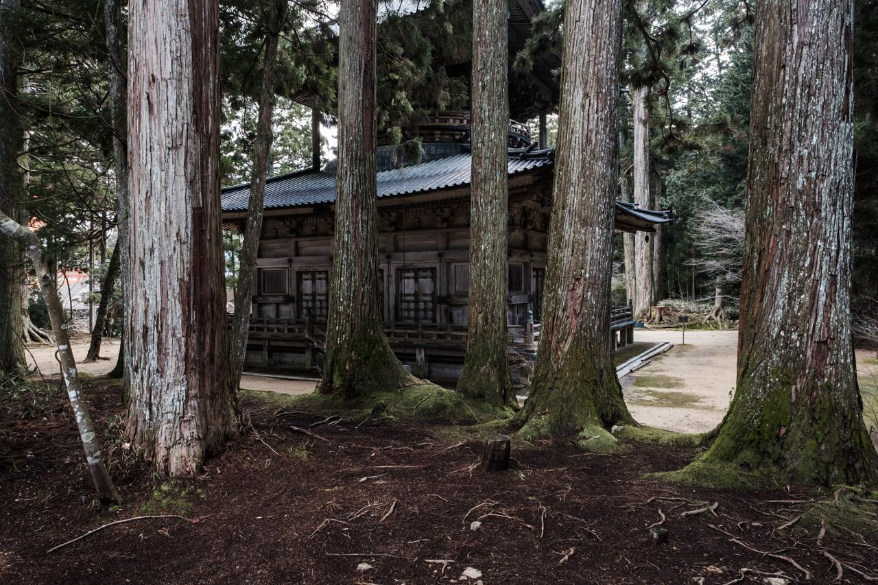 tokyo & kansai region 9.jpg