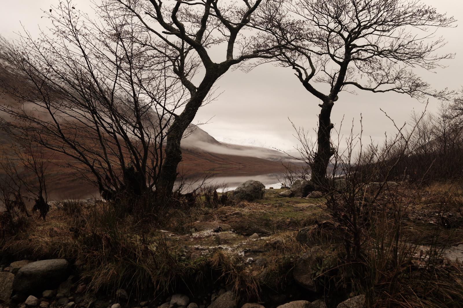 scottish highlands-10.jpg