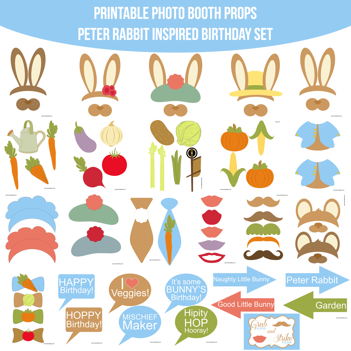 See the Set - To View The Whole Peter Rabbit Inspired Birthday Printable Photo Booth Prop Set Click Here
