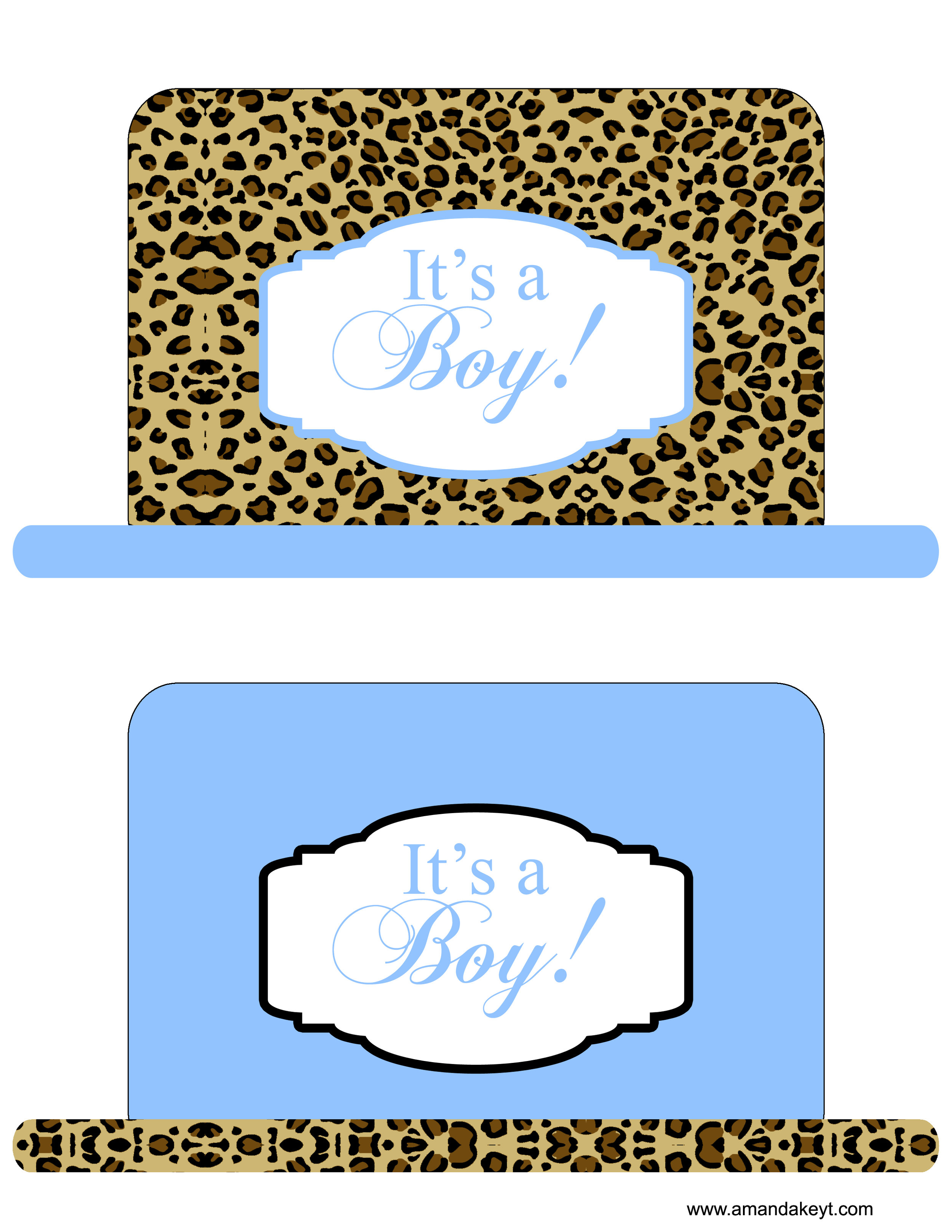 Baby Blue Cheetah