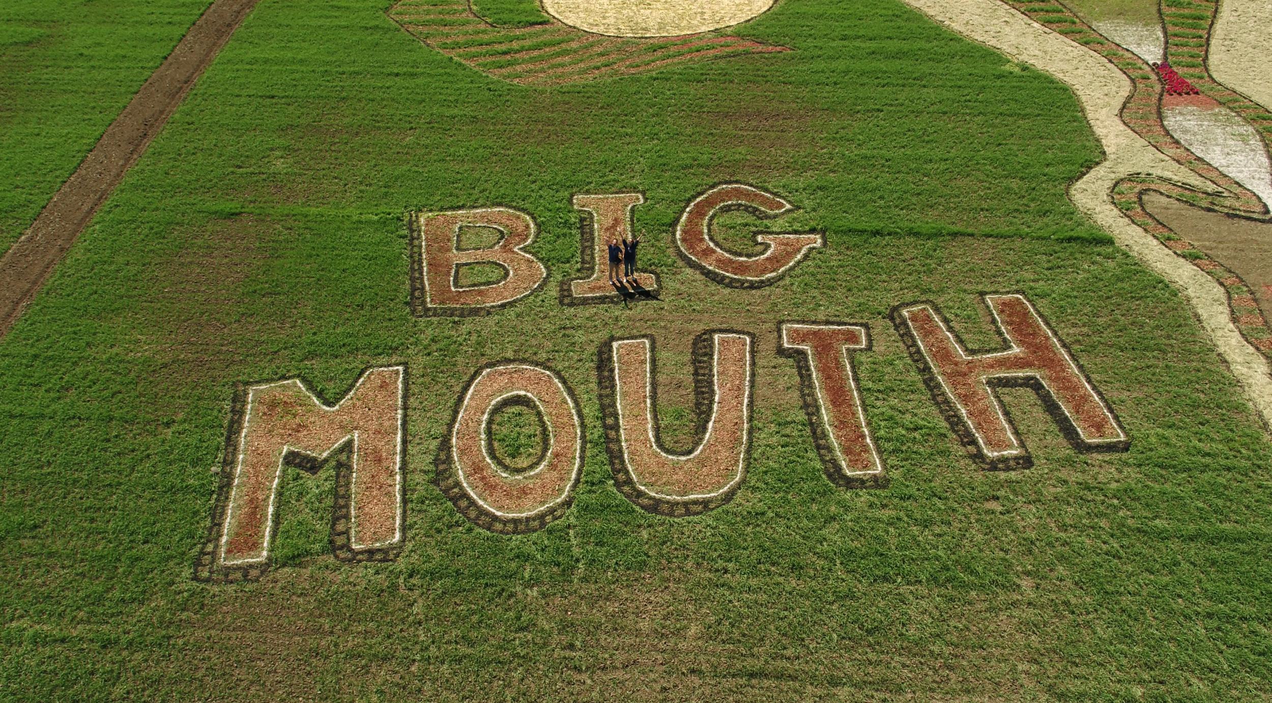Big Mouth_North Star Aerial_Netflix