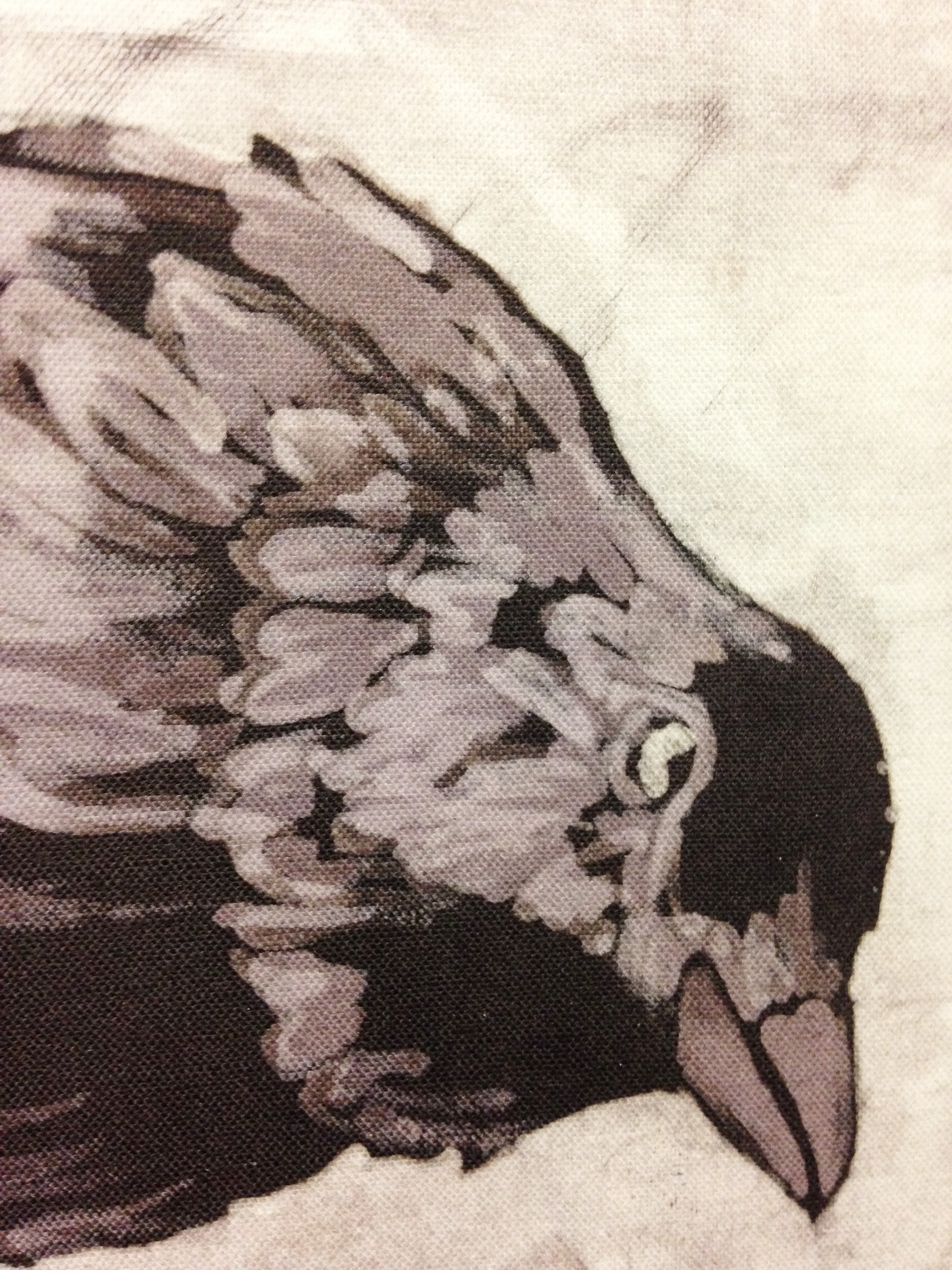 black bird detail.jpg