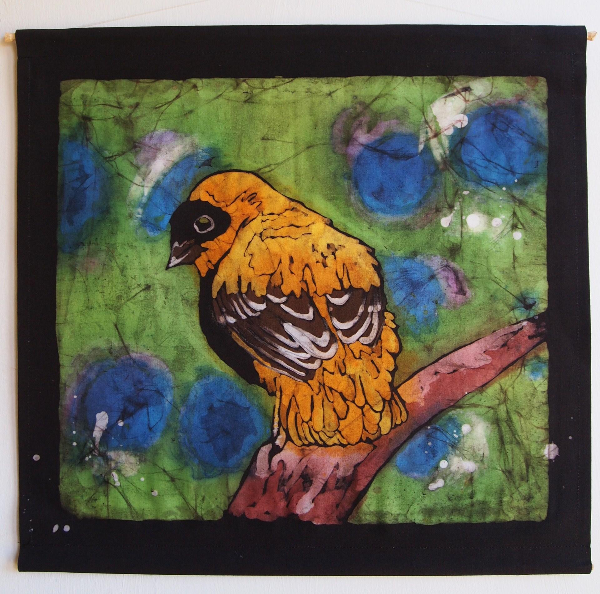 Bird orange 1.JPG