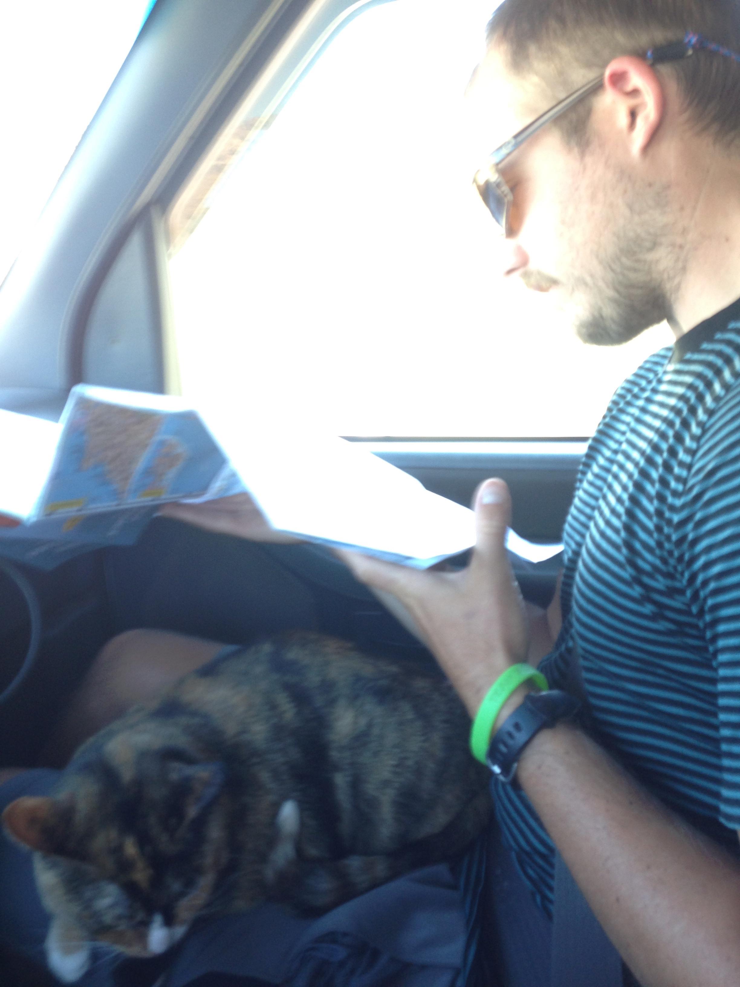 Loulou slacking on the job as navigator.