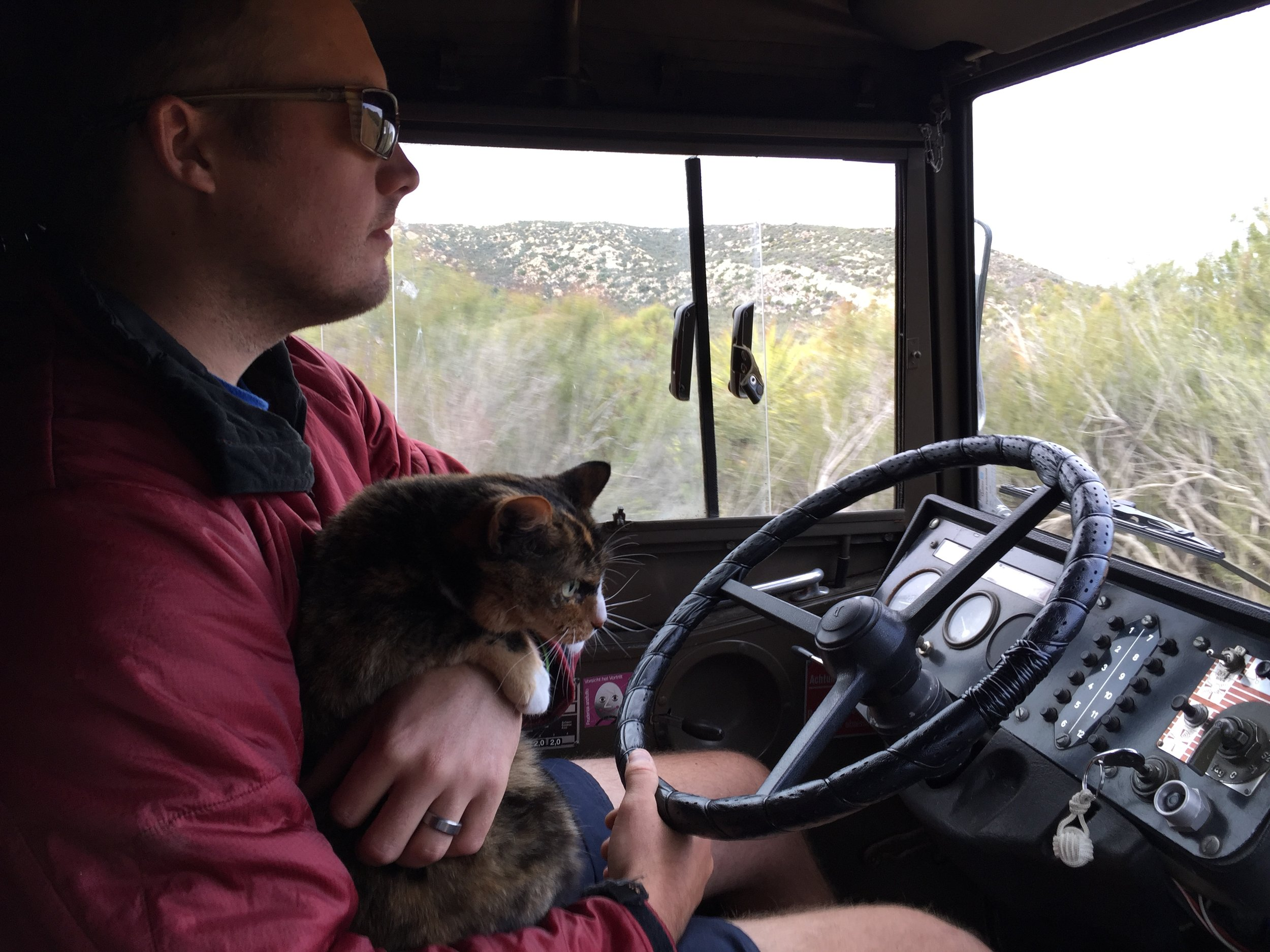 4-wheeling with a cat!