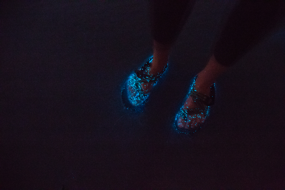 Chel's feet and her Chacos, bathed in light from the sea. (Hey Chaco…sponsor us!!!)
