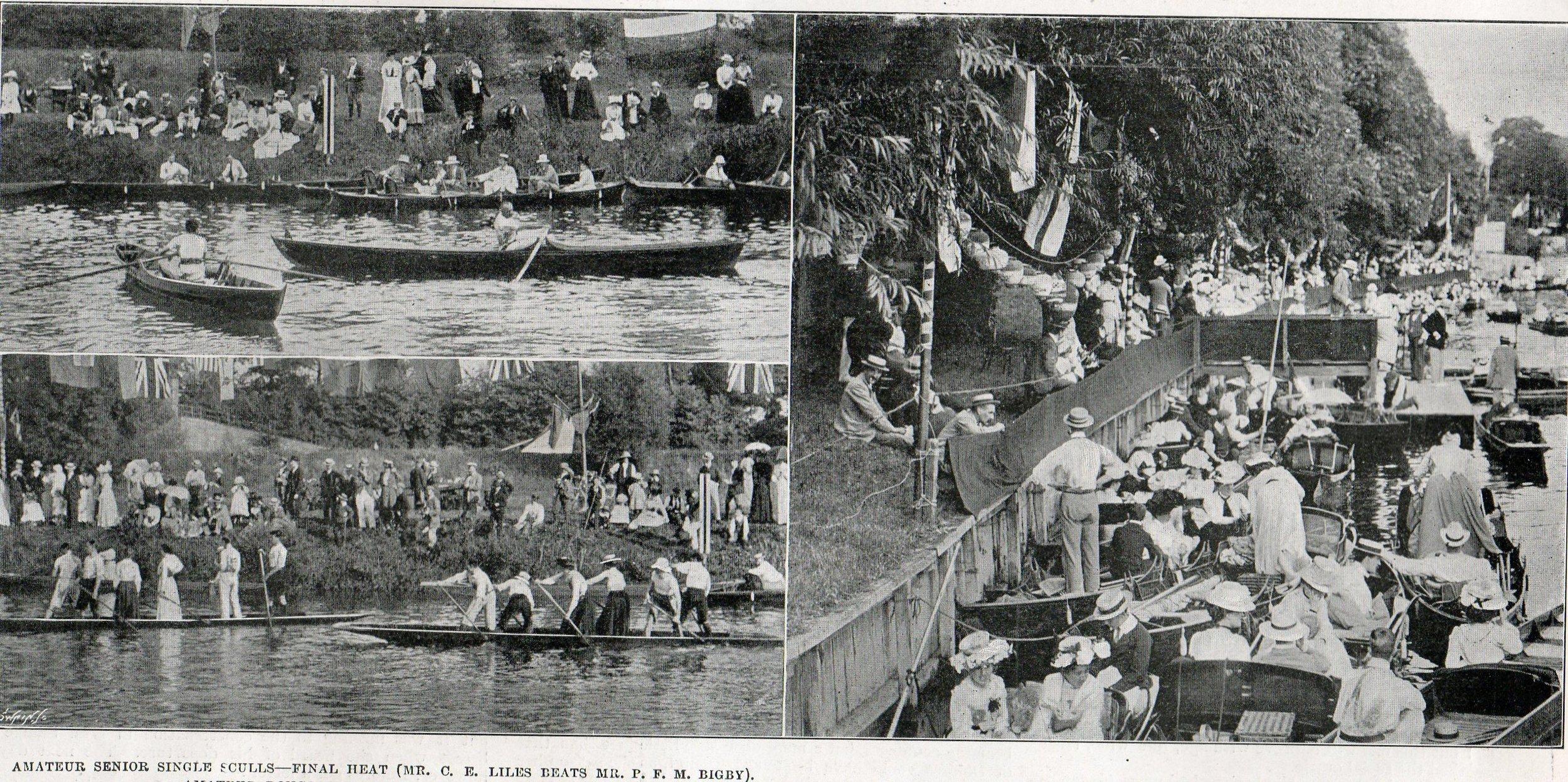 Regatta 1901.jpg