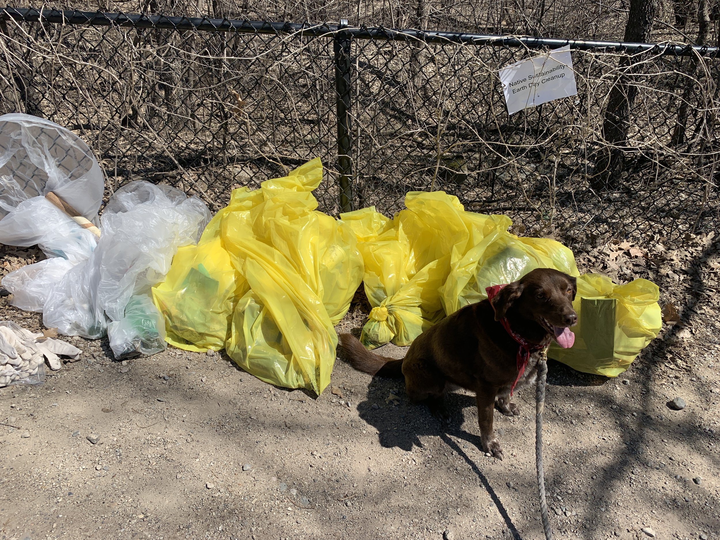 Edie with our trash haul