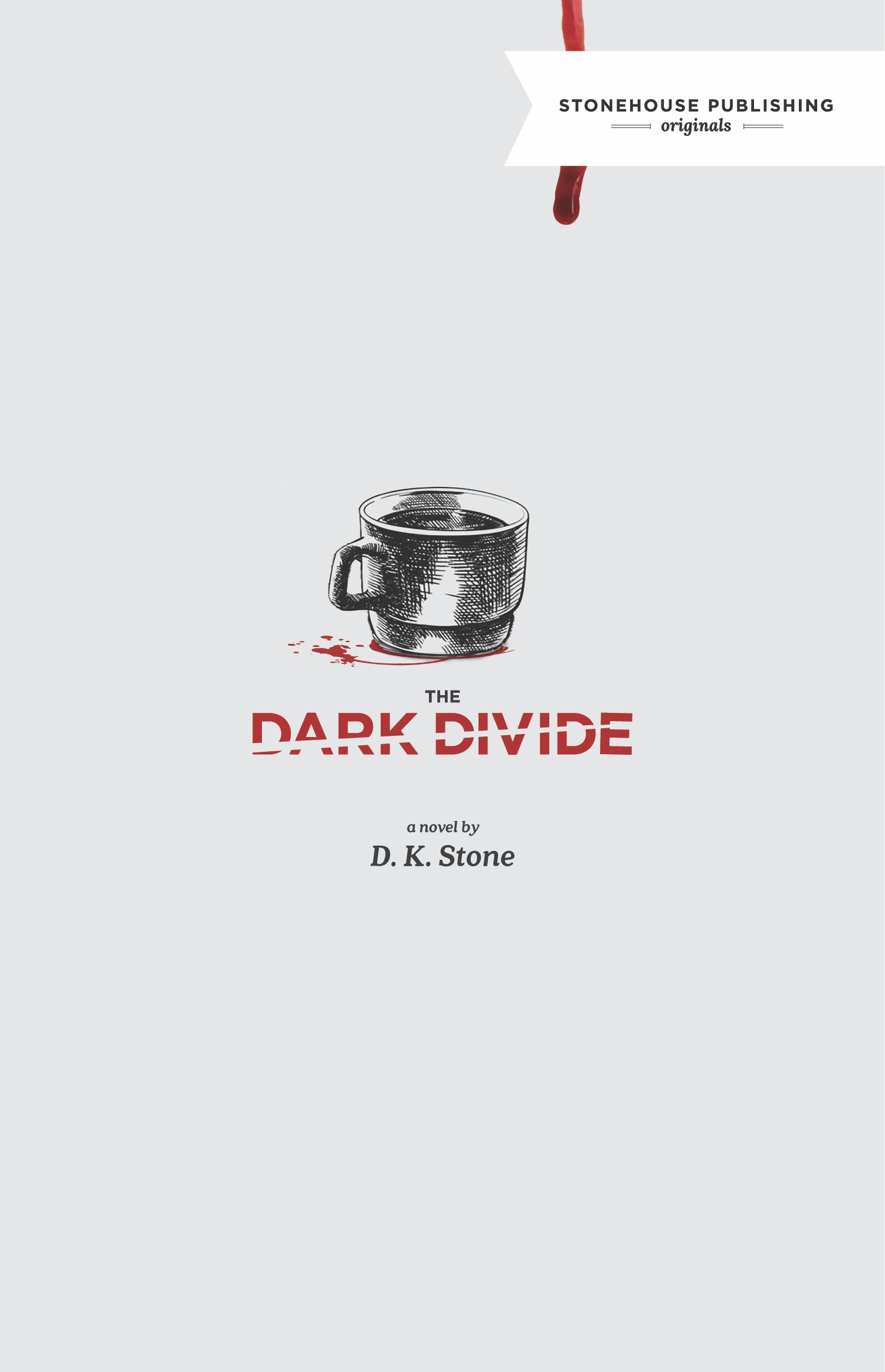 Dark Divide Cover