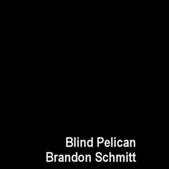 Blind Pelican Split (2013)