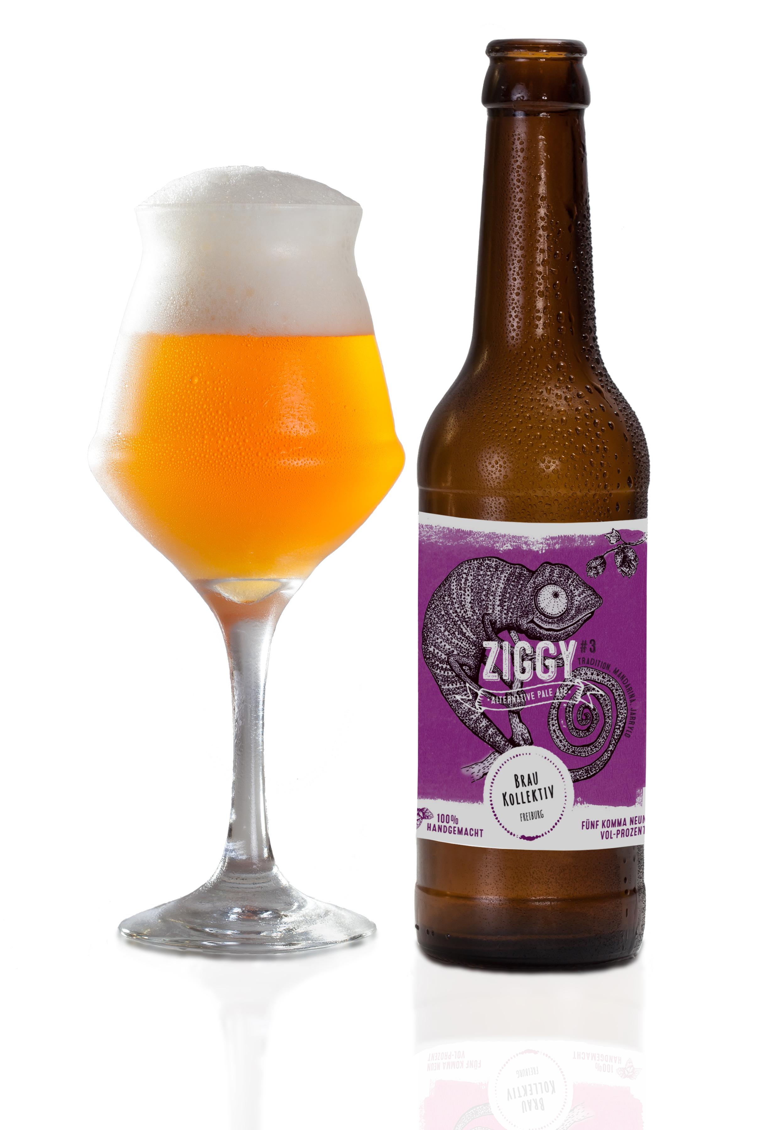 Ziggy3_W_Glass.jpg