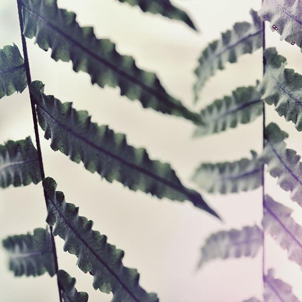 Fall II - Art Print
