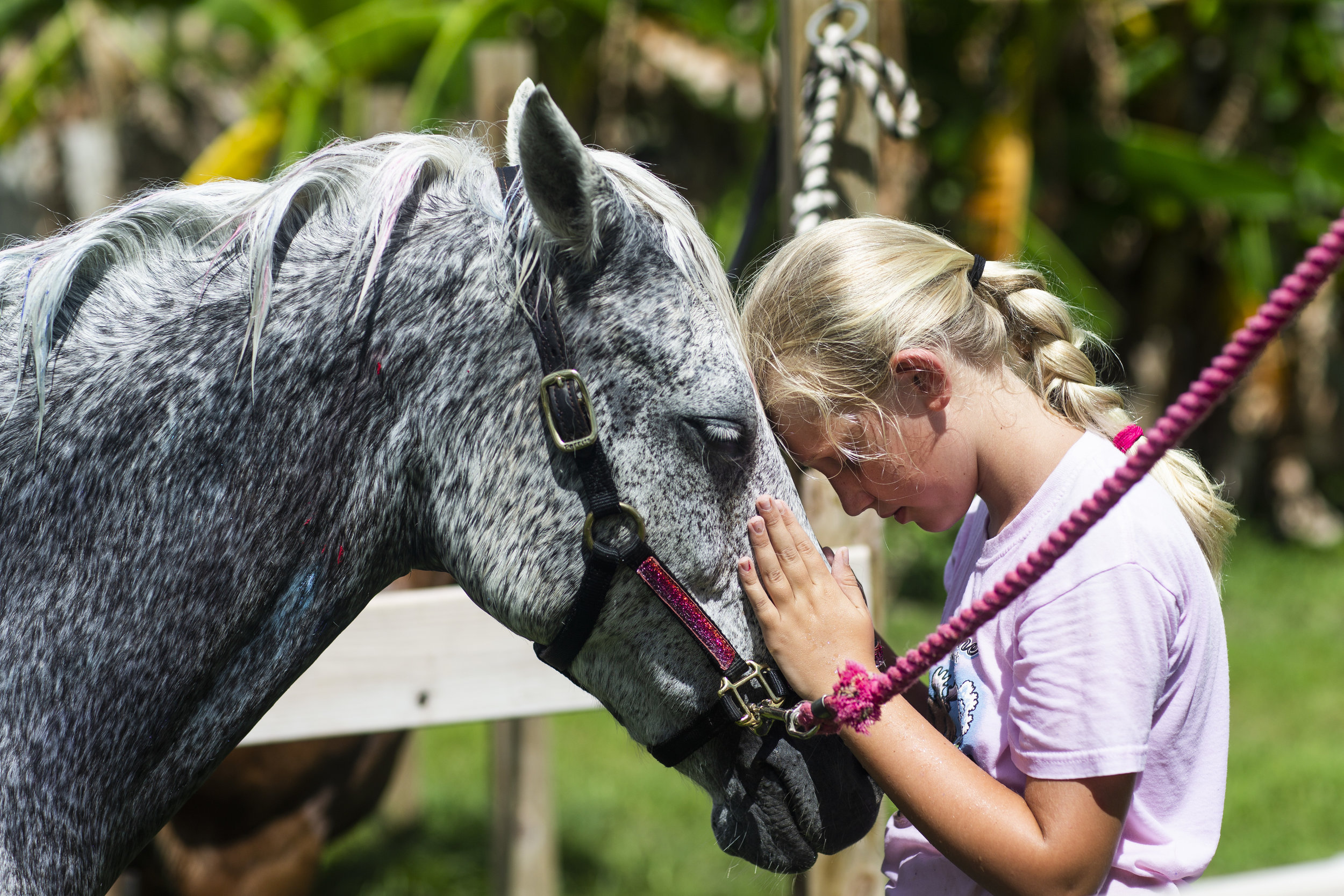Lily Nagel, 9, shares a moment with Penny the pony during a summer equestrian session at Cornerstone Farm South in Naples on Friday June 15, 2018.