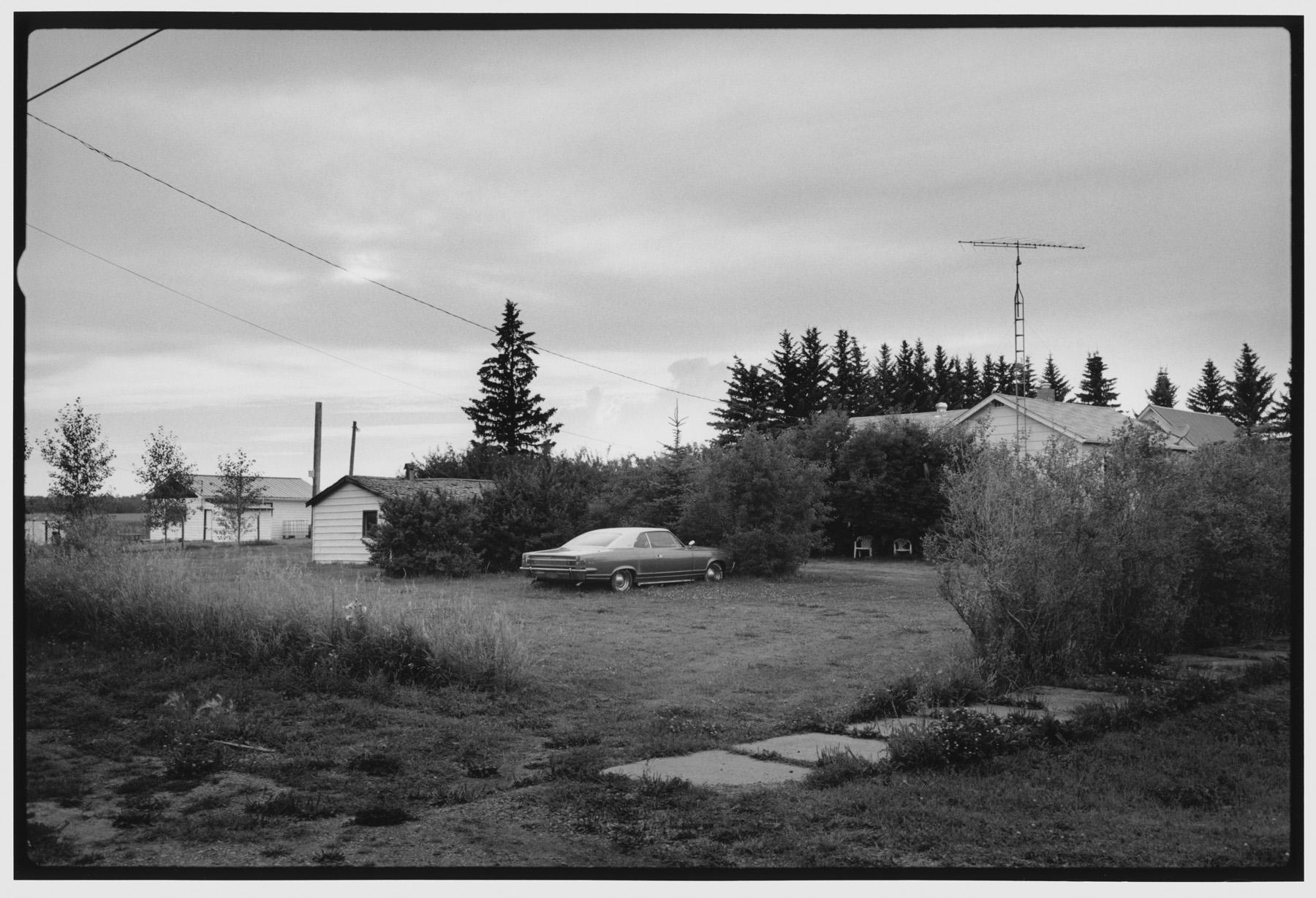 Backyard, Rumsey, AB