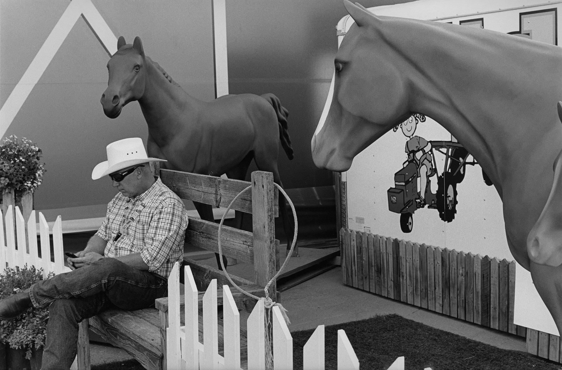 guy two horses.jpg