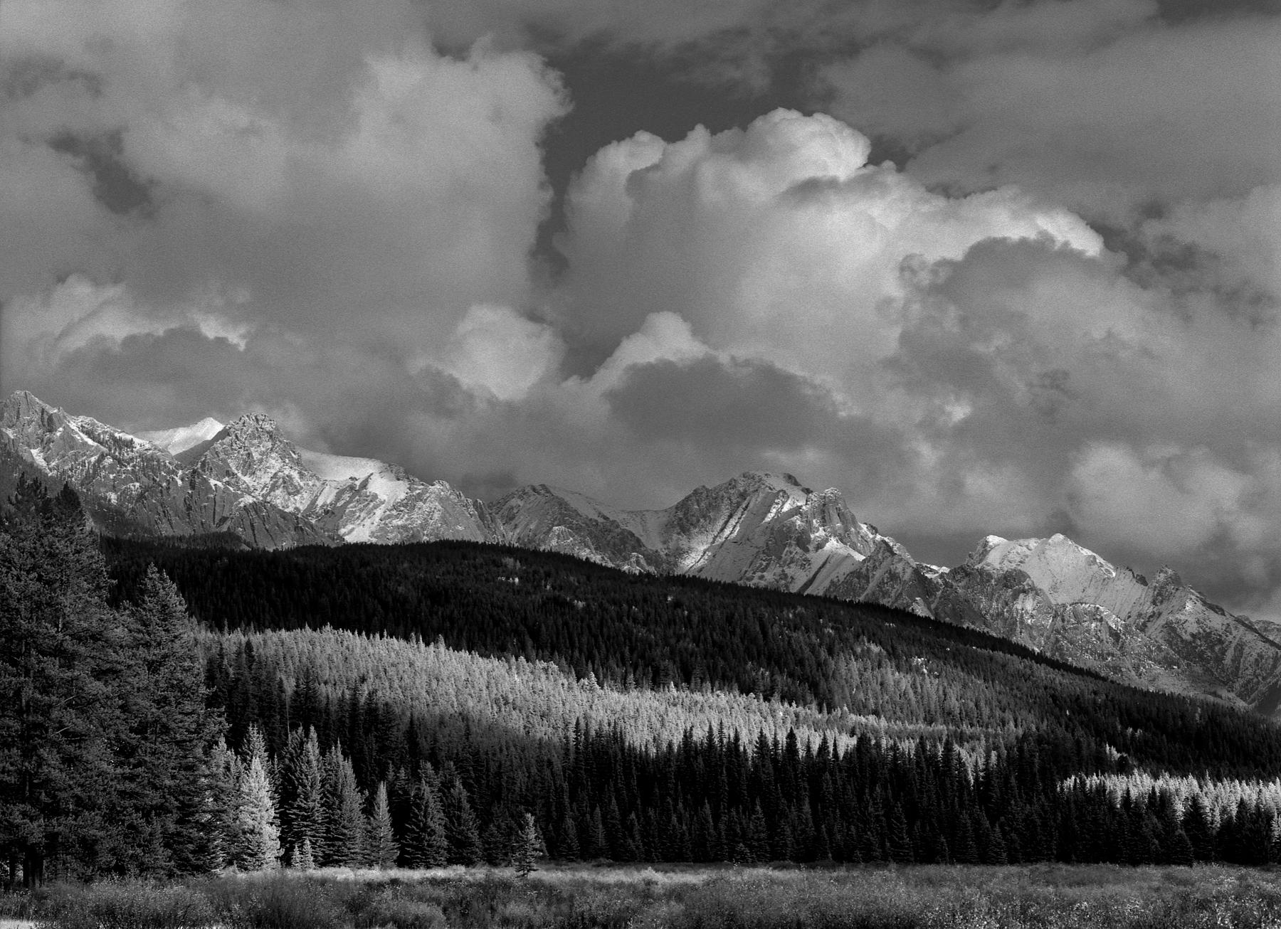 Sawback range, Banff
