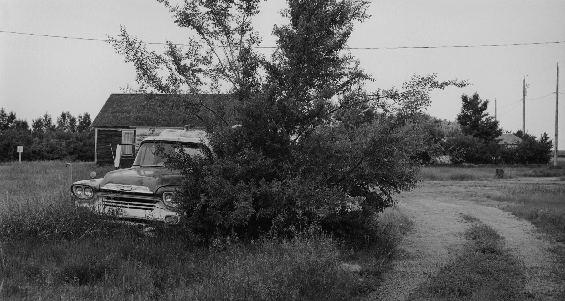 Truck in bushes, Pan .jpg