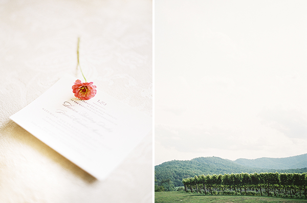wedding at pippin hill farm and vineyards002.jpg