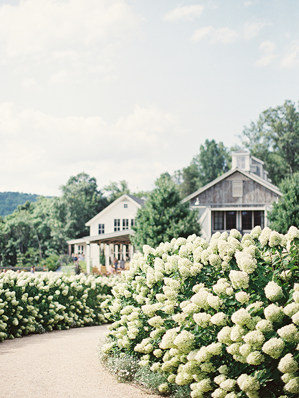 wedding at pippin hill farm and vineyards001.jpg