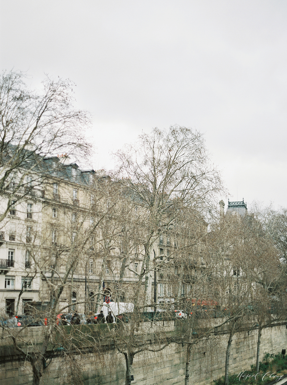 misty days in Paris03.jpg
