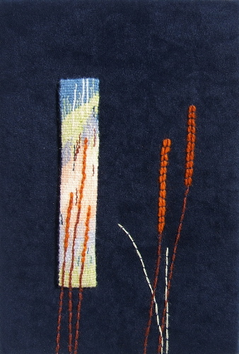 Window and Grass  ©2000 Elizabeth J. Buckley Mixed media: Handwoven tapestry with couching