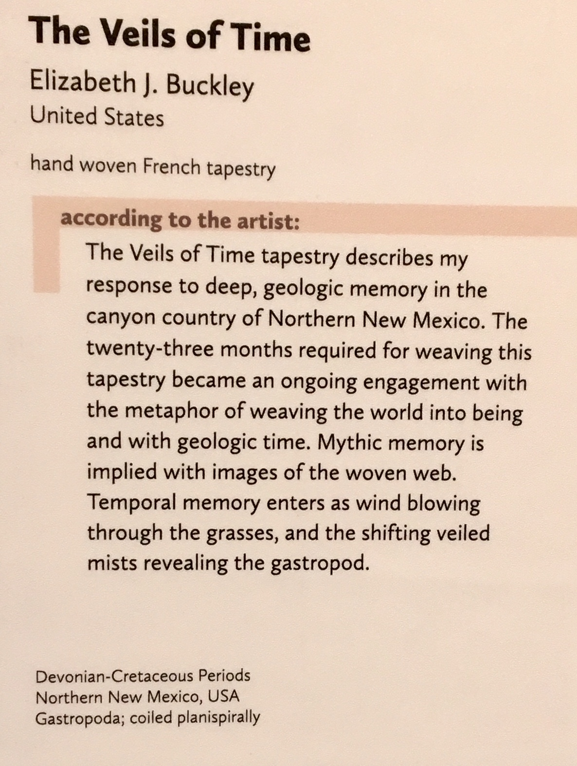 "Artist statement displayed beside ""The Veils of Time"" tapestry"