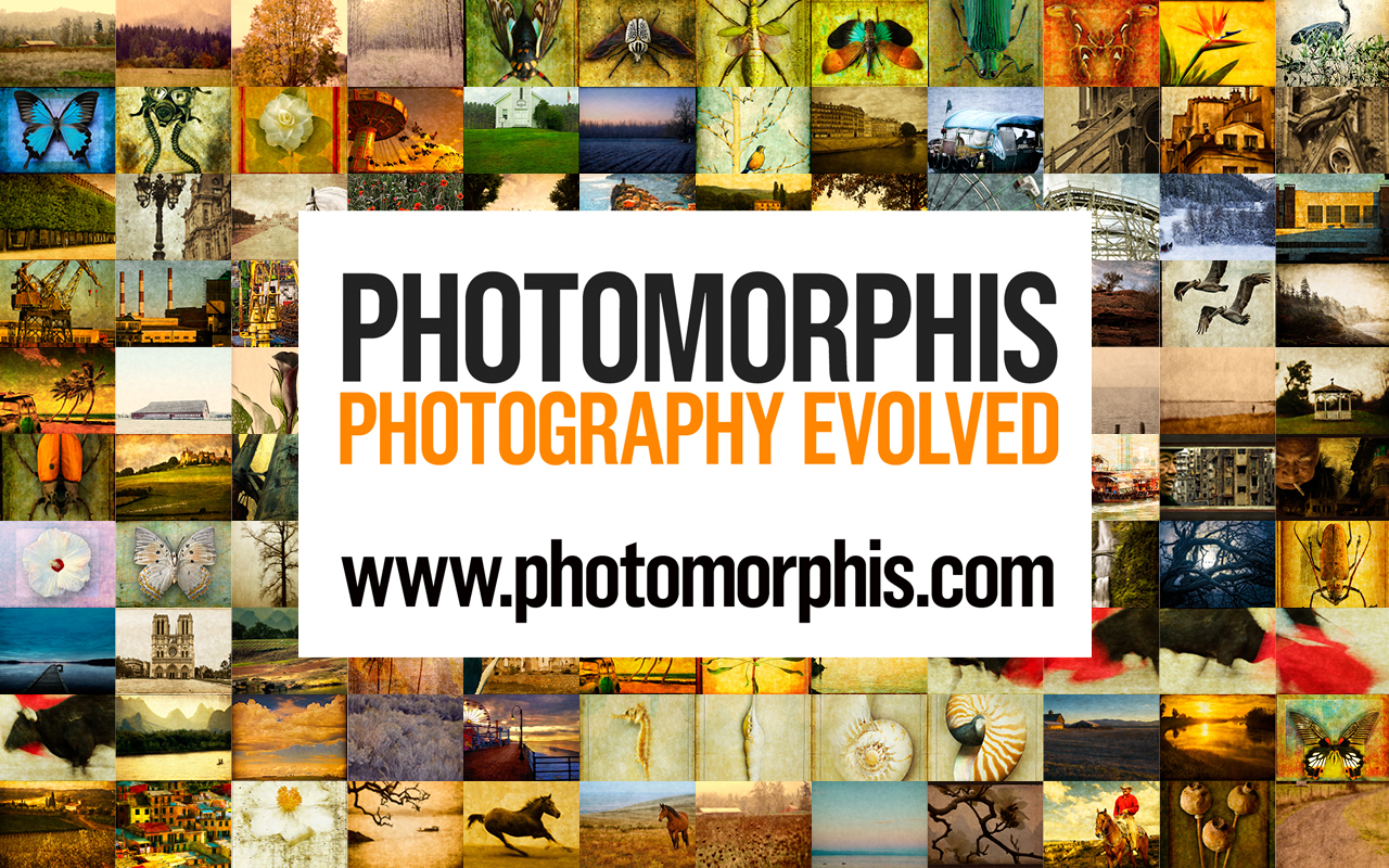 Click the image to open Photomorphis.com