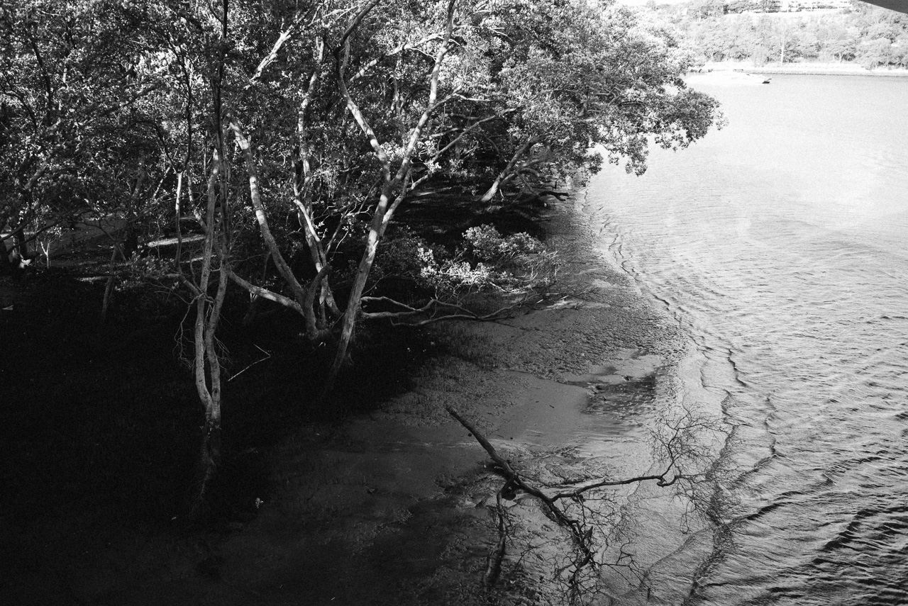 Nick-Bedford-Photographer-160620-145906-35mm Summarit, Brisbane, Leica M Typ 240, Street Photography, VSCO Film.jpg