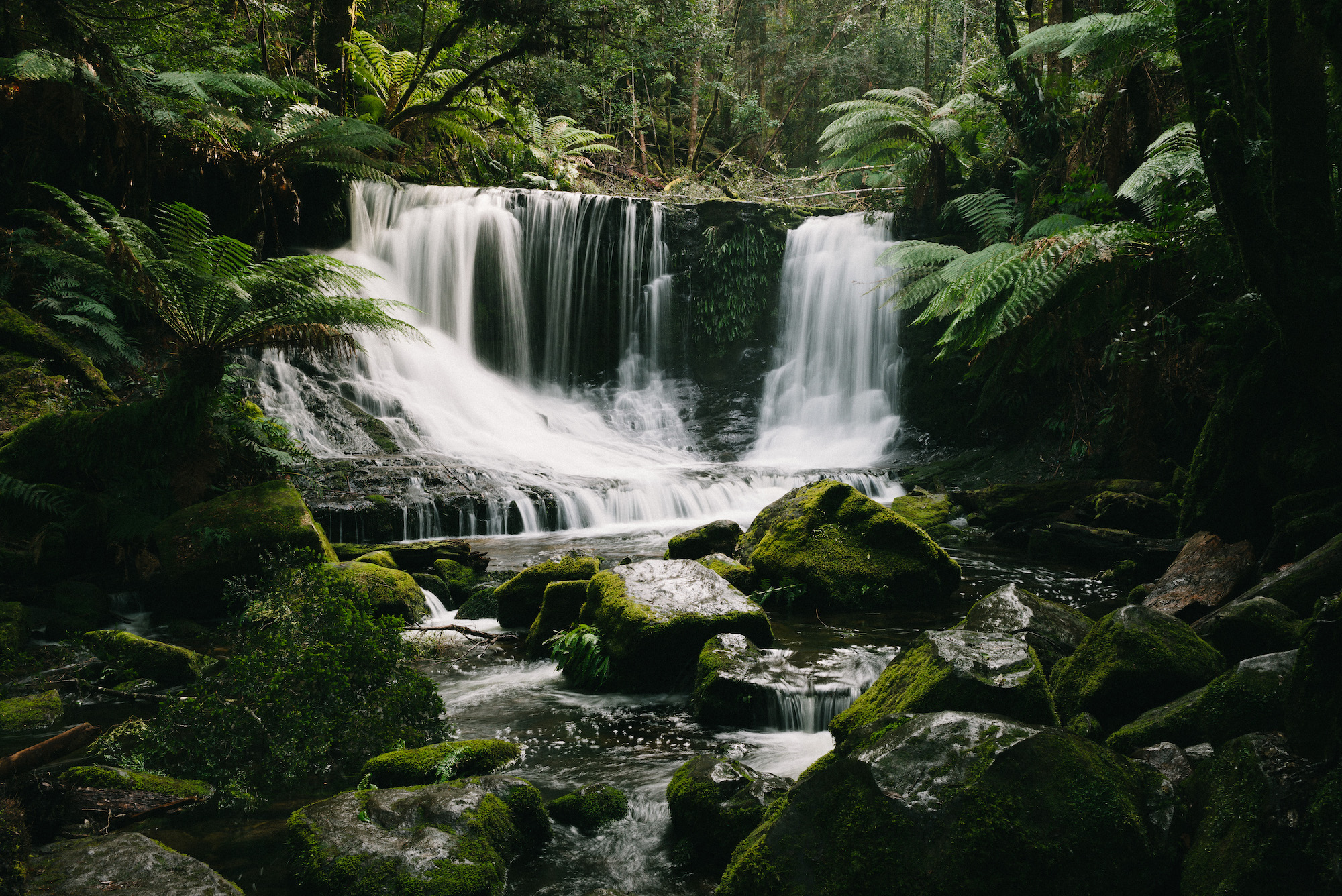 Horseshoe Falls, Tasmania shot on Leica M Typ 240 with Leica Summarit 35mm lens.
