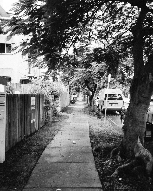 20170107_WECC_083421-Nick-Bedford,-Photographer-Black and White, Brisbane, Leica M Typ 240, Summarit 35mm, Summer, VSCO Film, West End Camera Club.jpg