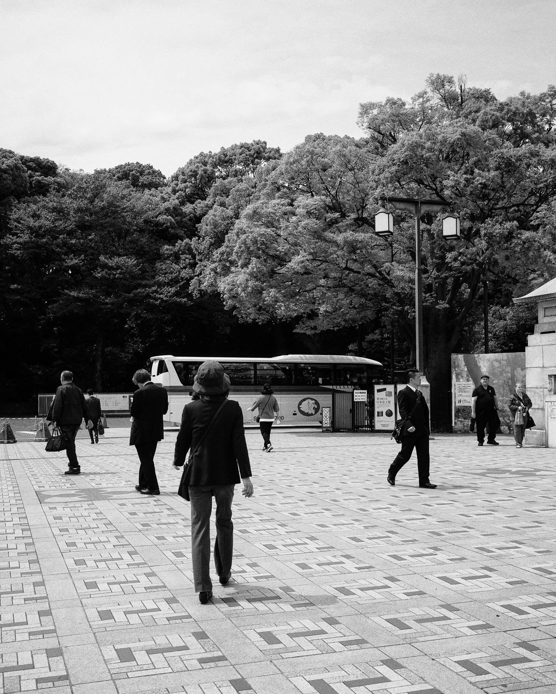 Meiji Shrine over there.