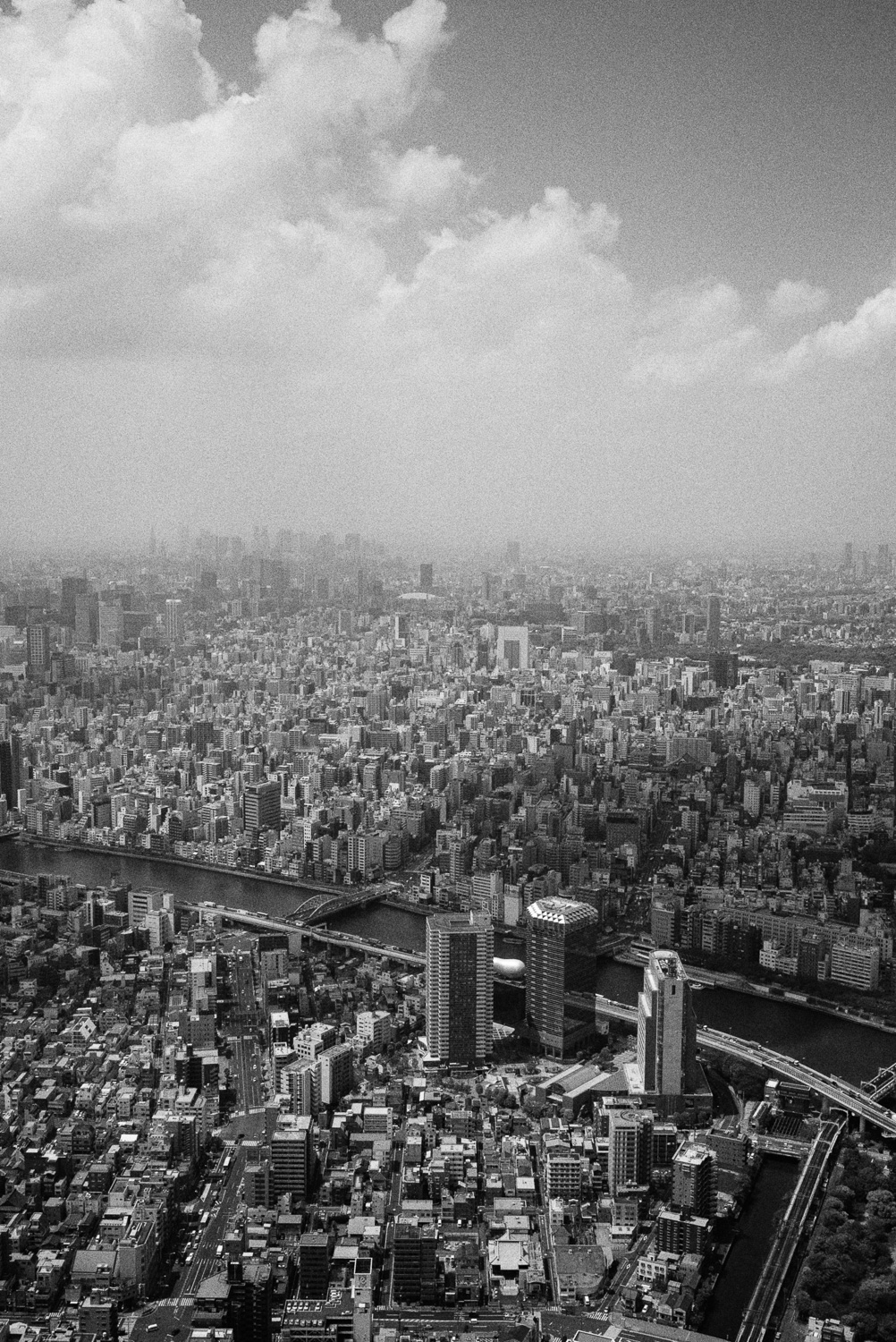 Tokyo is big. Really big. You just won't believe how vastly, hugely, mind-bogglingly big it is.