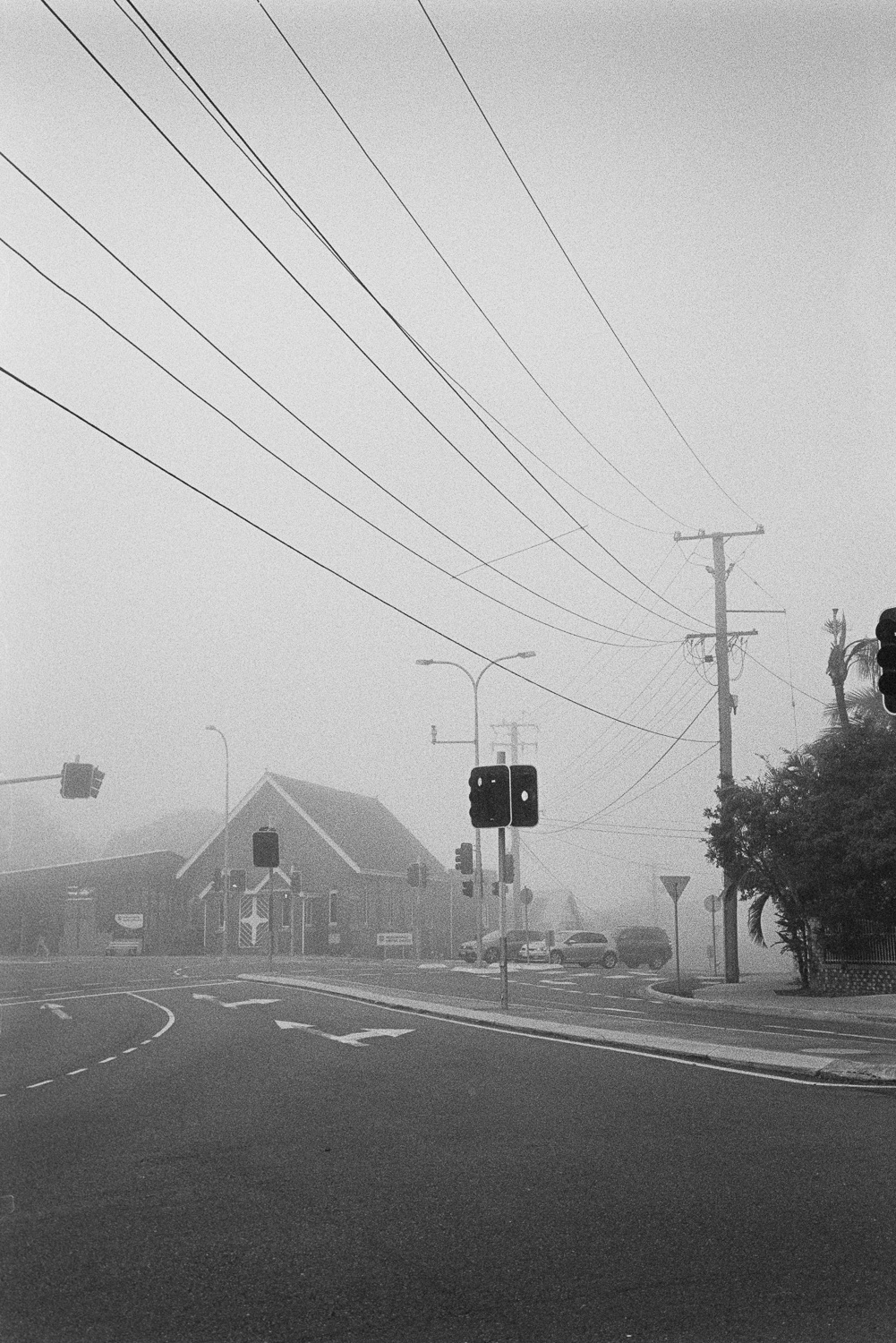 It's been a foggy winter in Brisbane. I LOVE it.