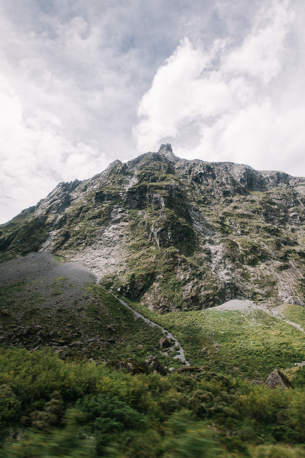 Along Milford Sound Highway.
