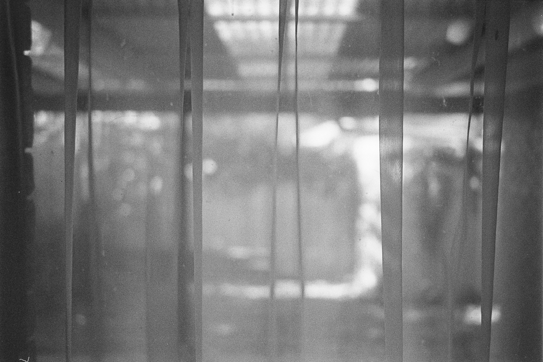 Kodak and light.