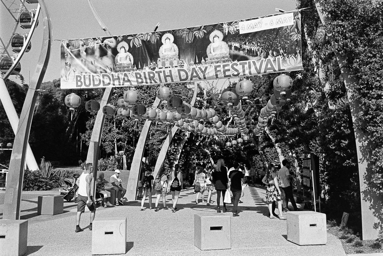 20180507 - Roll 184 - 008-Nick-Bedford,-Photographer-Black and White, Brisbane, Kodak TRI-X 400, Leica M7, Street Photography, Voigtlander 35mm F1.7 Ultron Asph.jpg