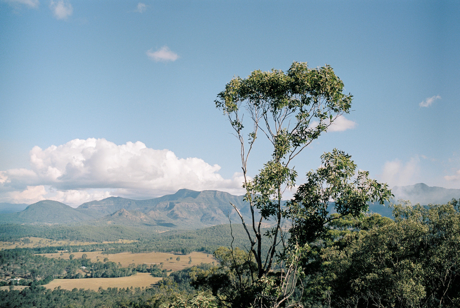 South end of Main Range from Mount Greville.