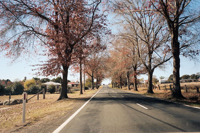 Tenterfield in Autumn.