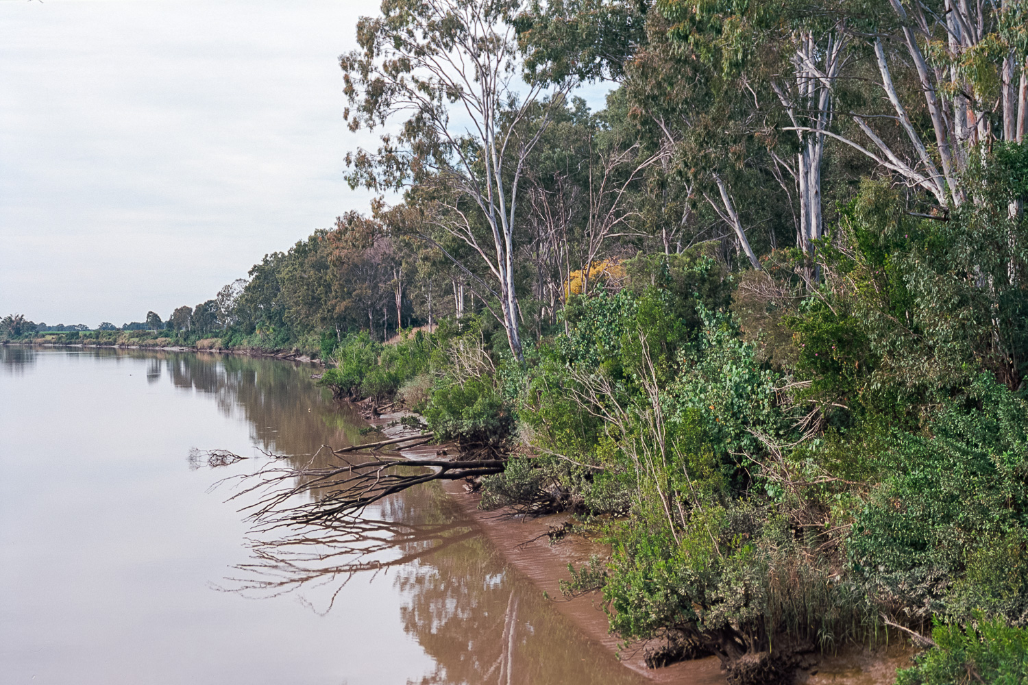 The Mary River.