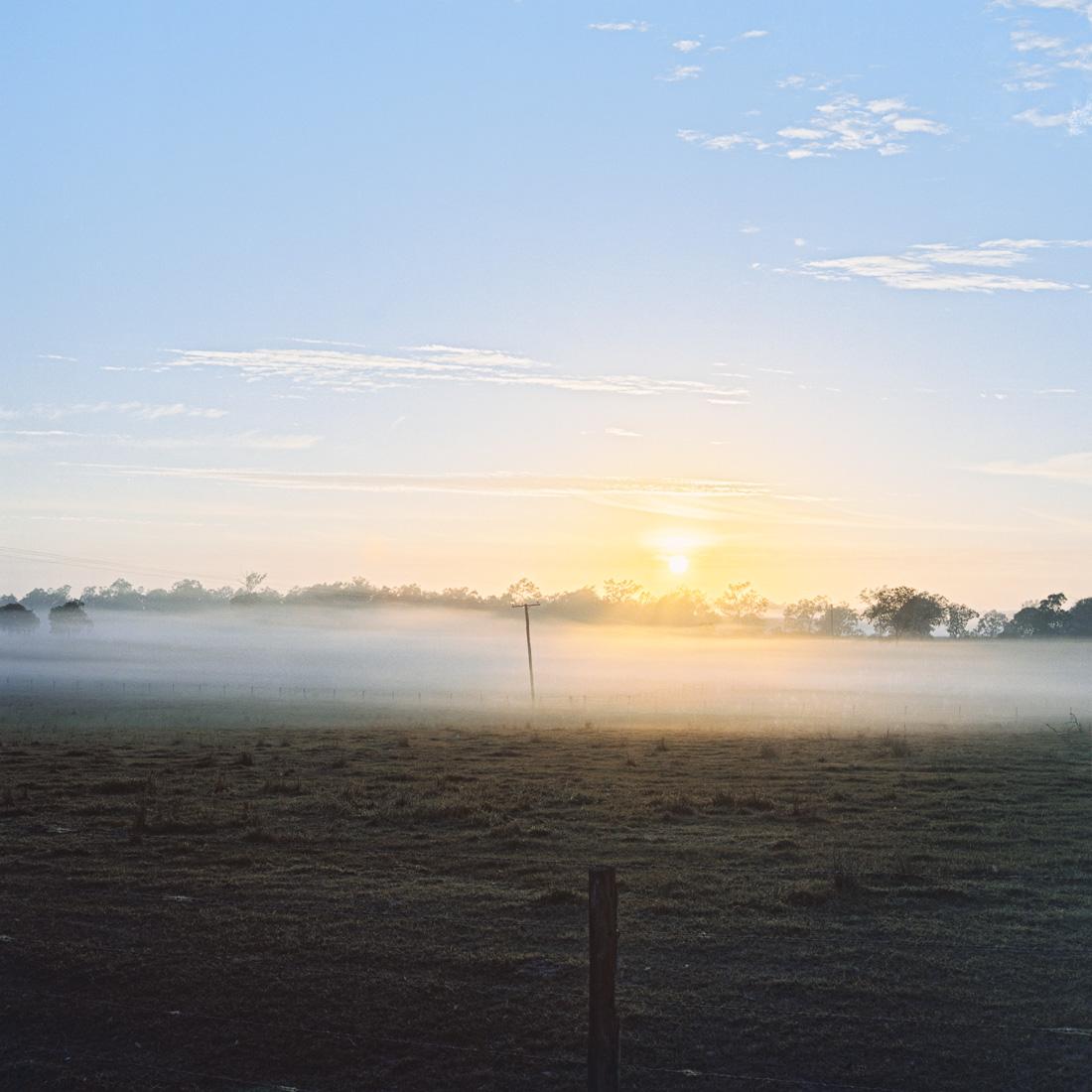 Sunrises on the Rolleiflex (Kodak Portra 400).