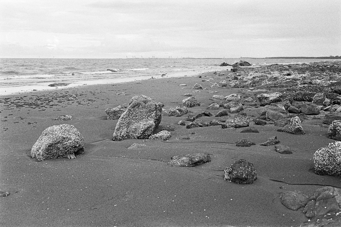This is why I love Tri-X.