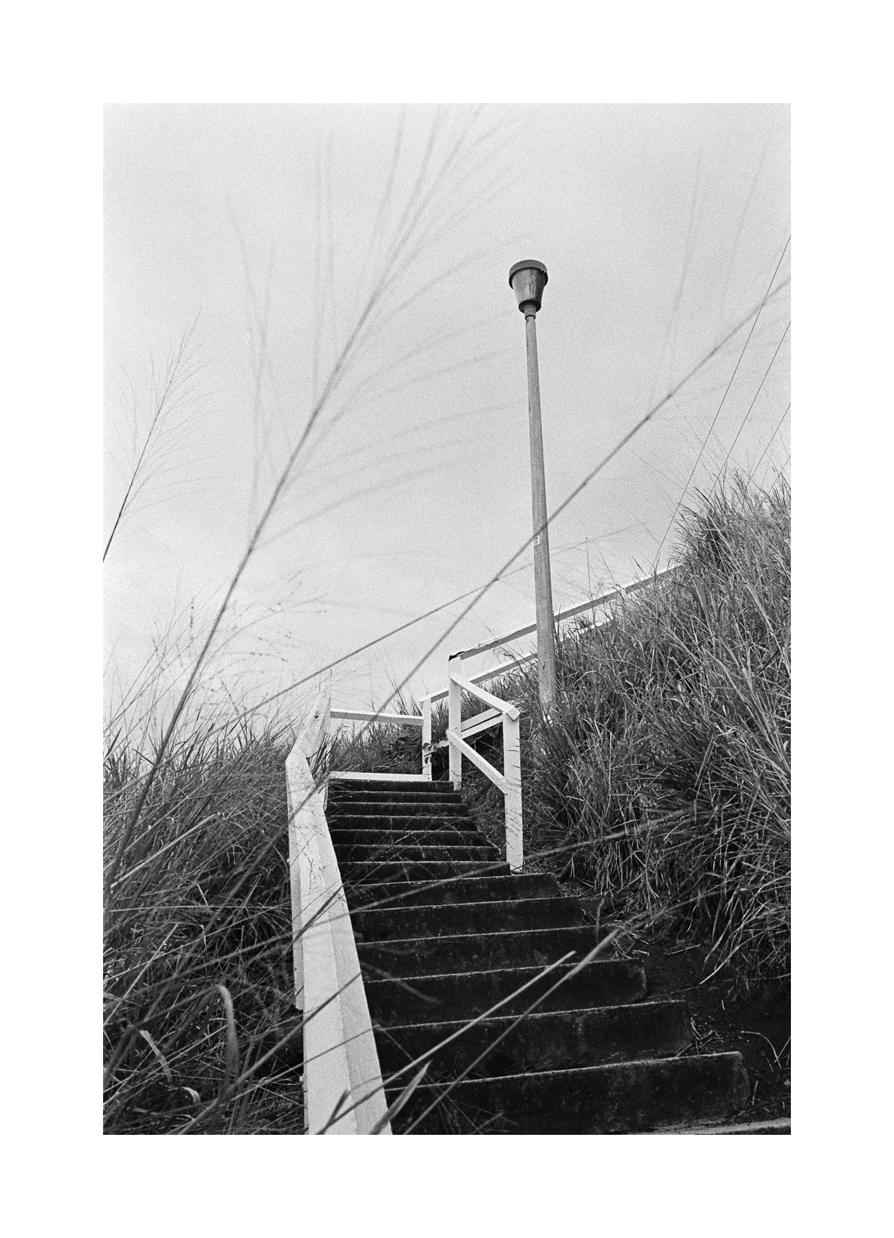 2018106 - Roll 252 - 029-Nick-Bedford,-Photographer-Black and White, Kodak TRI-X 400, Landscape Photography, Leica M7, Shorncliffe, Voigtlander 35mm F1.7.jpg