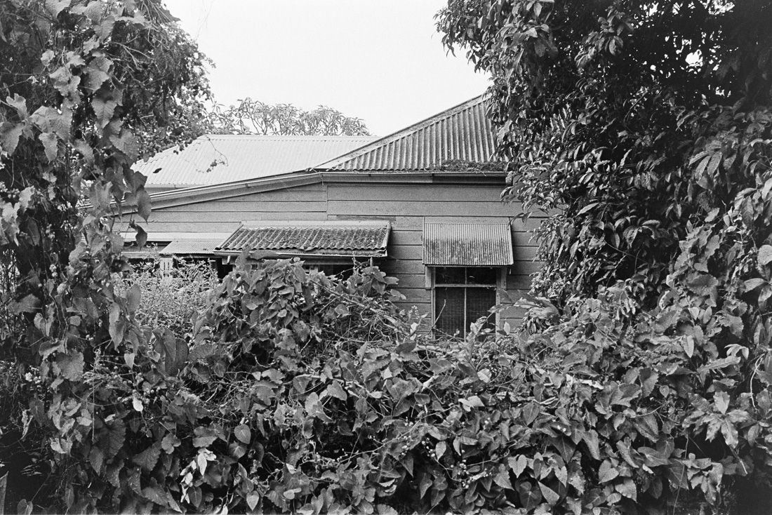 20181209 - Roll 267 - 010-Nick-Bedford,-Photographer-Black and White, Brisbane, Kodak TRI-X 400, Leica M7, Street Photography, Voigtlander 35mm F1.7.jpg